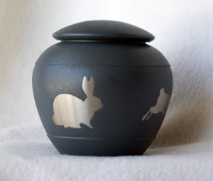 0713-BunnyGinger2-1000px